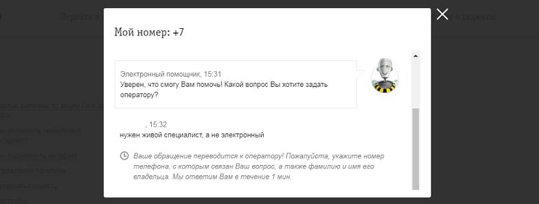 Электронный помощник оператора Билайн